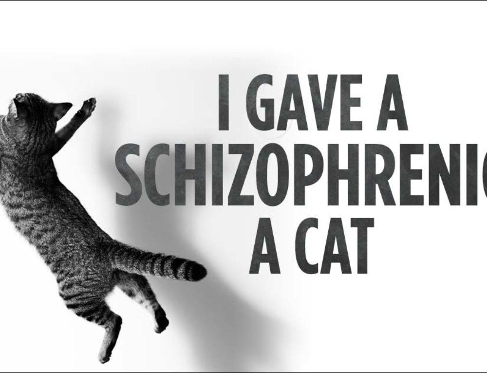 I Gave A Schizophrenic A Cat