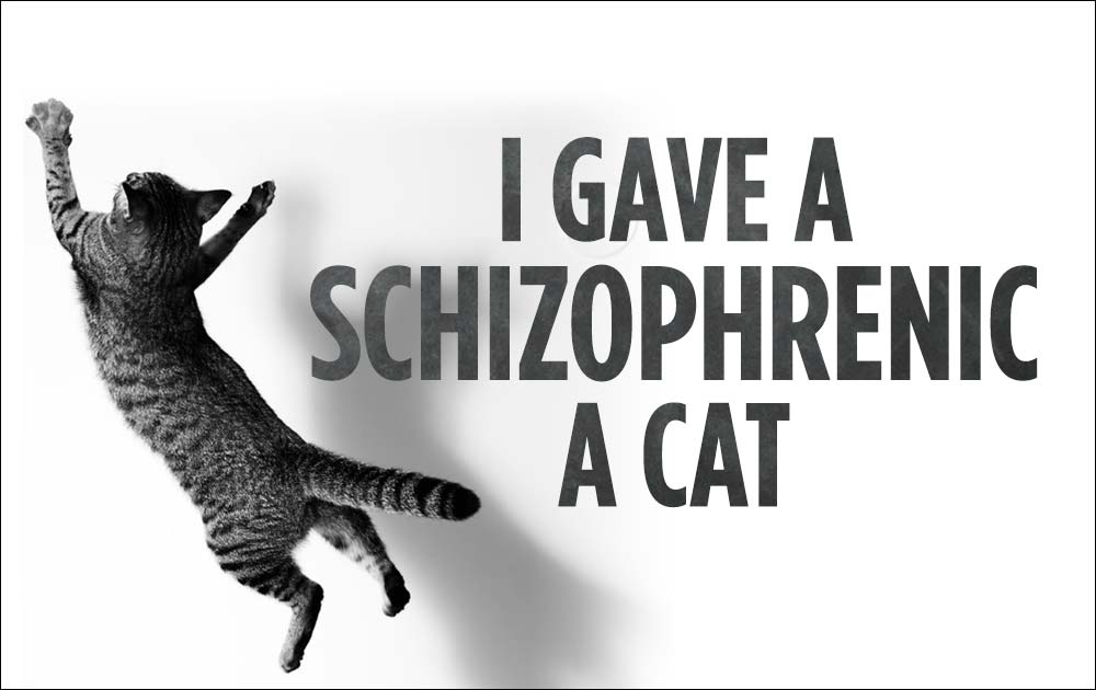 I Gave A Schizophrenic A Cat 12