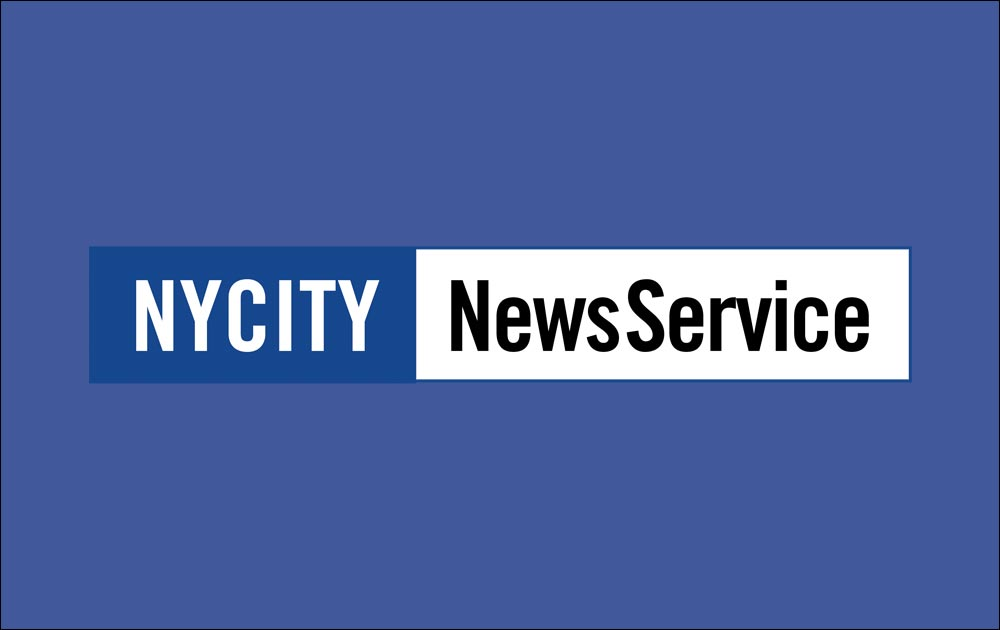 Schizophrenic.NYC Featured in NYCityNewsService.com 1